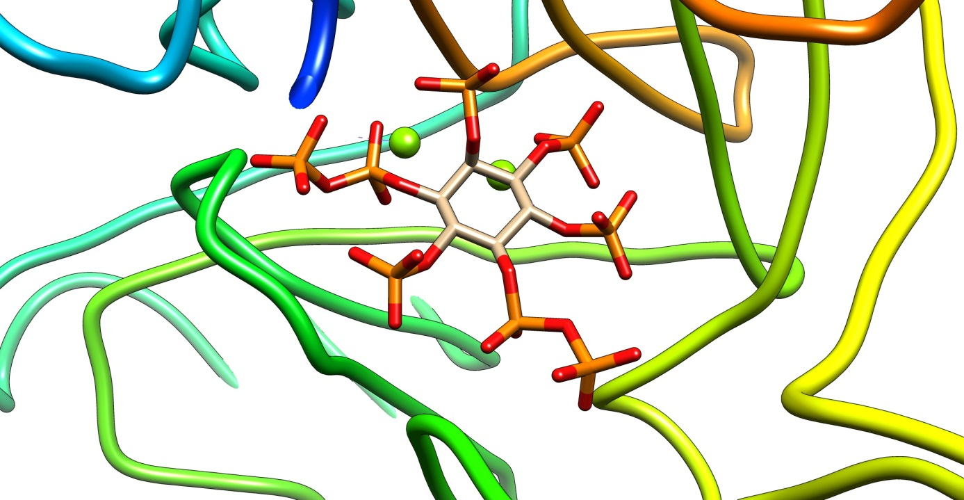 Merging Synthetic Chemistry and Biology: A synthetic InsP8 Bound to the Kinase Domain of Human PPIP5K (collaboration with Steve Shears, NIH, USA)
